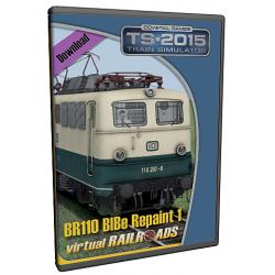 Repaint DB BR110 207 8